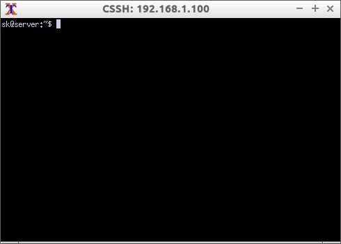 CSSH: 192.168.1.100_006
