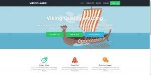 vikinglayer-300x149.jpg